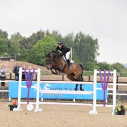 3Reign Equestrian Division going from strength to strength | #NotJustSoftware